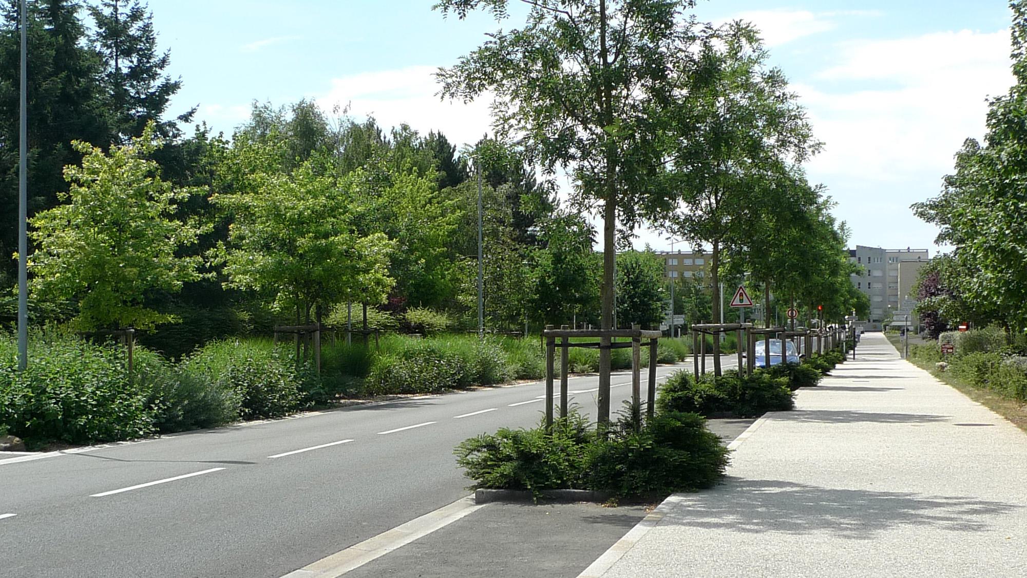 Avenue des Sablons